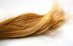 Was hat es mit silikonfreiem Haarshampoo eigentlich auf sich?